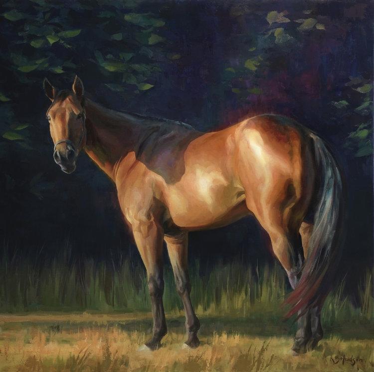 Paint Horses in Kentucky